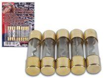 Fusibles haute puissance, rapide 20a, 5 pcs (CHA002/20)